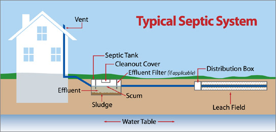Septic Permitting Process & Soil Percolation Test - Pure